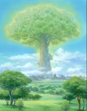 ECOSIA 種樹計畫